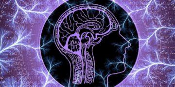 Nervus Vagus – Ubalanse. Har du et nevrologisk problem?