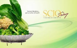 grønnsaker på en metallrist med tekst: SCIO