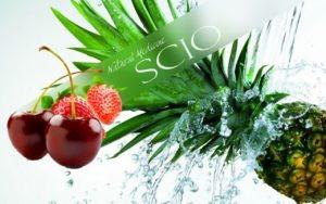 SCIO tekst med frukt og bær