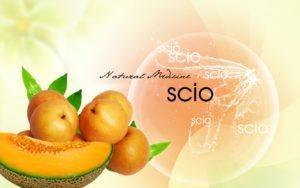 scio tekst med melon og oransje frukt